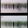 Transvideo-starliteHD-V1toV2-3-Professional-video-monitoring